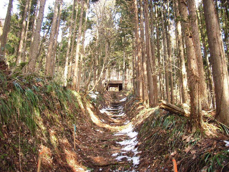 小沼神社参道
