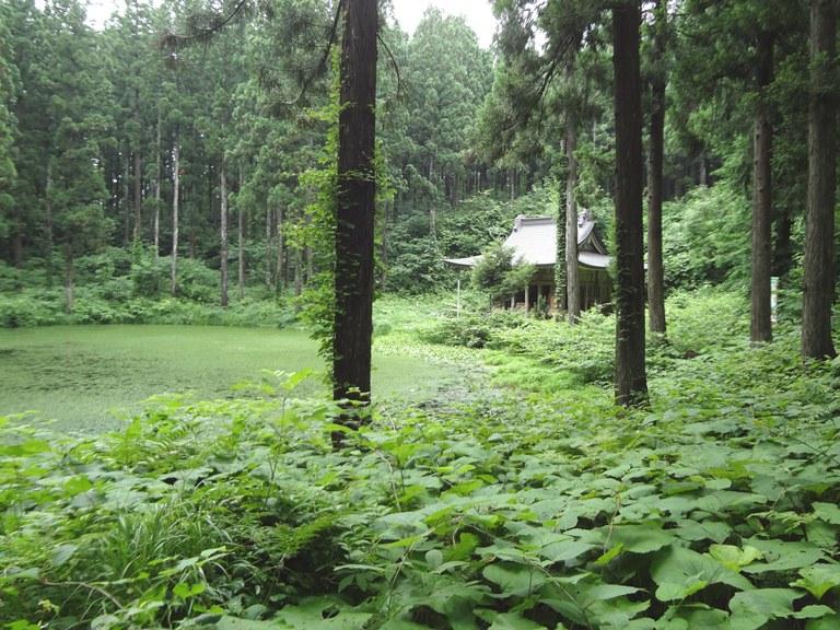 小沼のほとりに佇む小沼神社