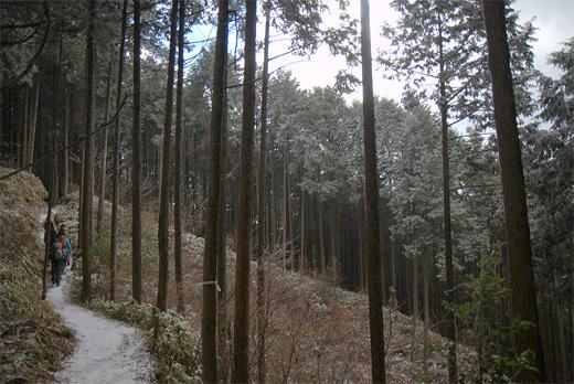 20111224-12.jpg