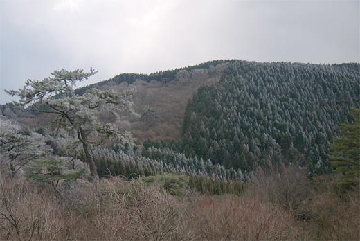 20111224-26.jpg