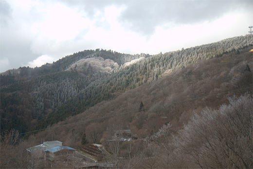 20111224-29.jpg