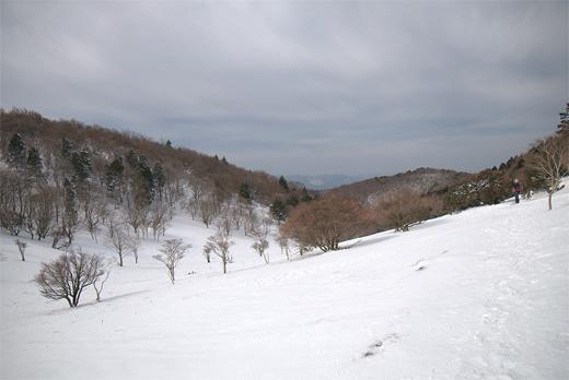 20120207-24.jpg