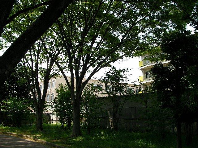 中学校と社宅
