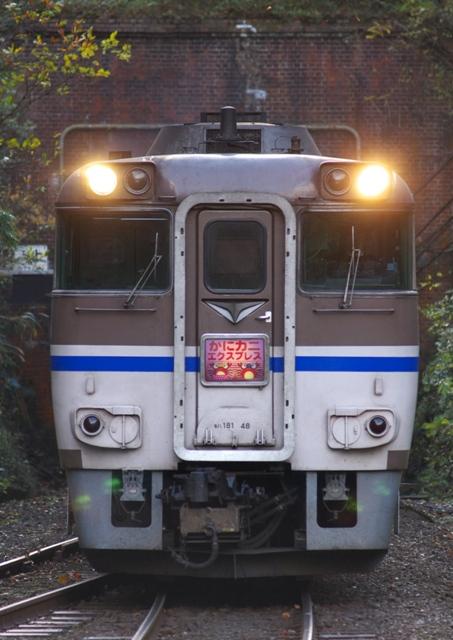 101129-JR-W-DC181-kanikani-igumi-2.jpg