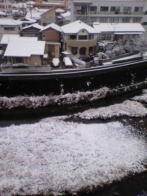 人吉も雪です