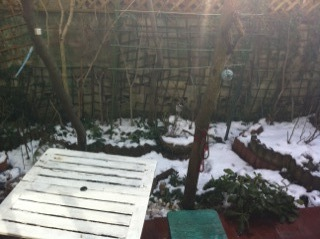 雪景色__