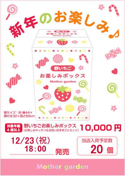 マザーグースの森オリジナル♪★2011年新春福袋★【野いちごおままごとBOX】