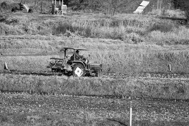 農家のベンツ