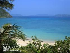 沖縄,青い海,渡嘉敷,壁紙