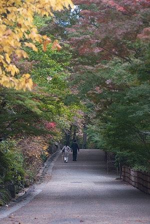 東山植物園3-5