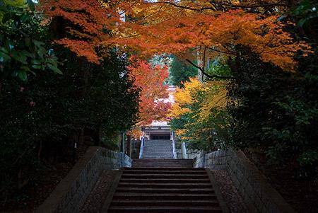 雲興寺-8