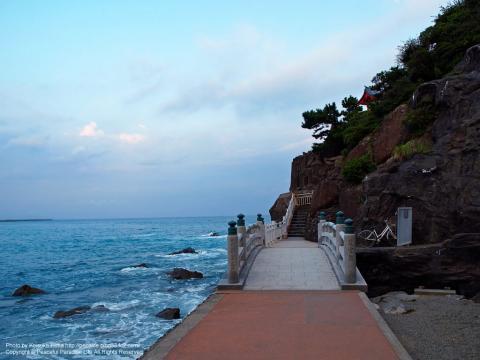 桂浜の岬に続く道