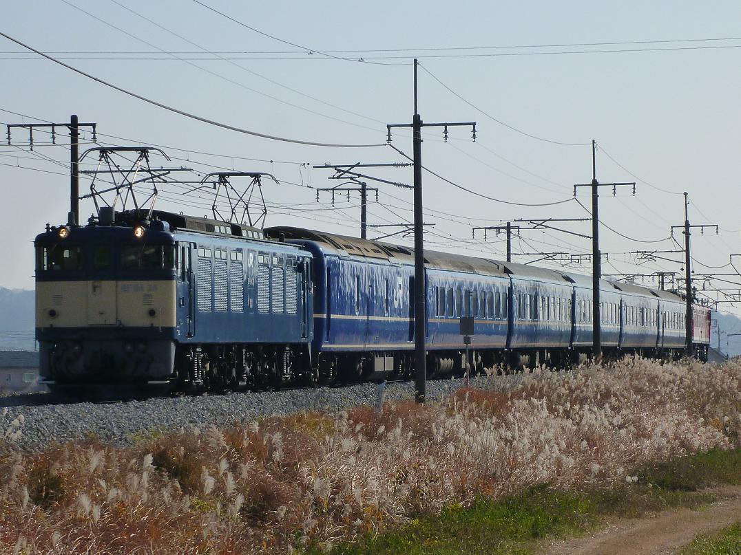 12/11 鉄道撮影記 団臨「越後」をヤギシブで
