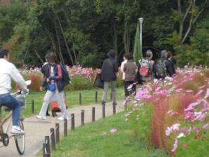 緑地公園2