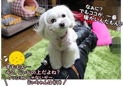 ベスポジ=じぃじの上ですがね(^_^;)